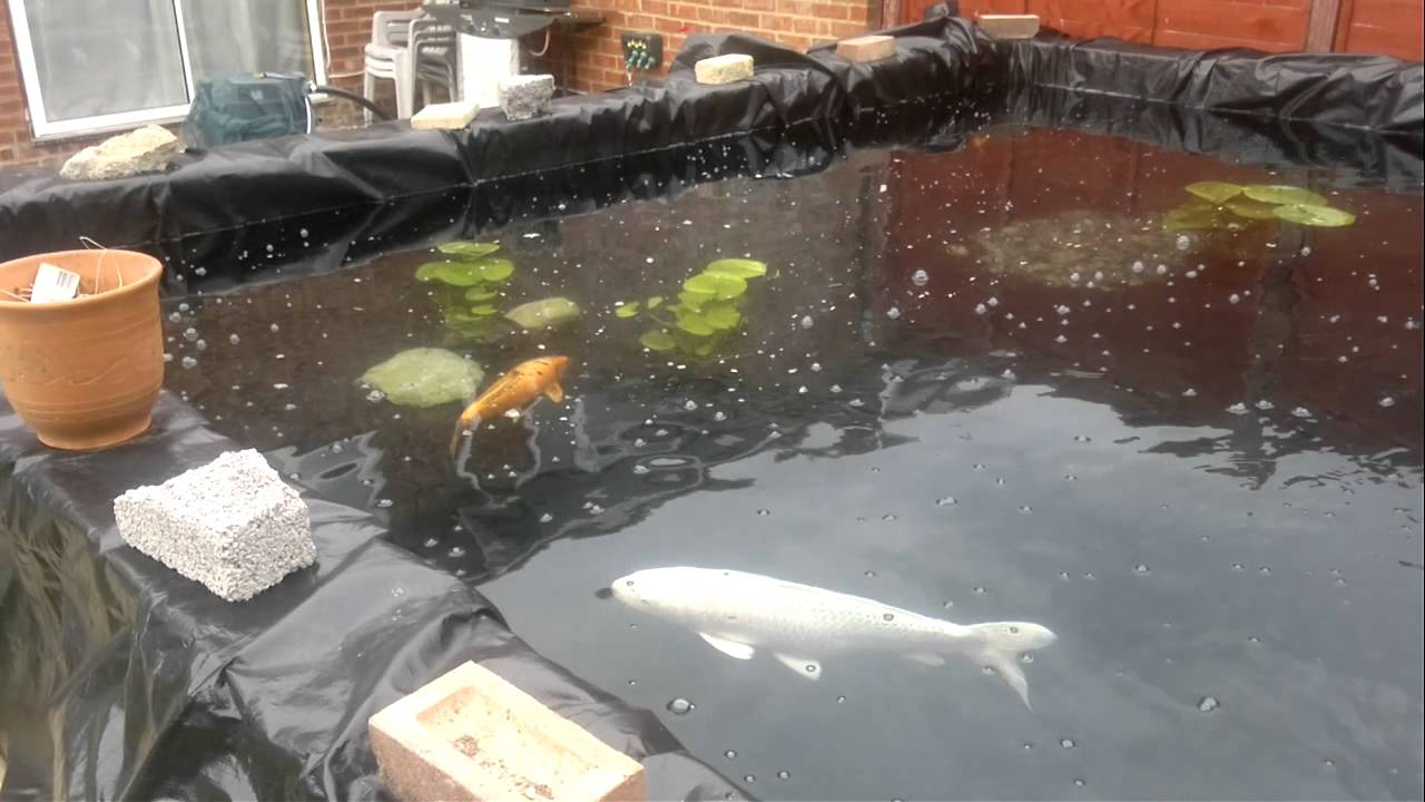 New koi pond 26 000 litres clear pond 80 filter youtube for Koi pond removal