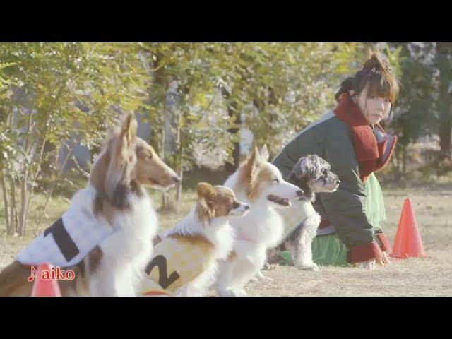 aiko - 毎年恒例の「aiko new year CM 2018」映像公開 thm Music info Clip