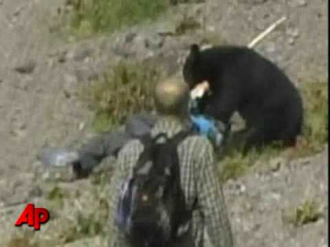 Raw Video: Bear Attacks Tourists in Japan