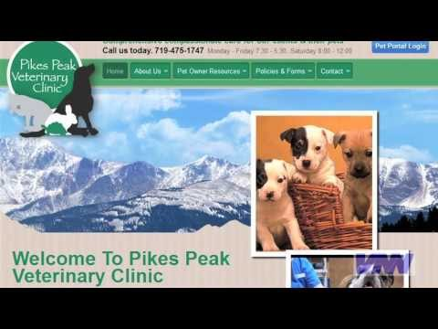 Can You Trust Veterinary Medical Advice On The Internet?