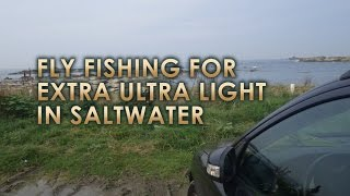 Ultra Light Fly Fishing in Japan: Miura Peninsula, Kanagawa