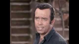 """""""What Kind Of Dang Law Is That?"""" 