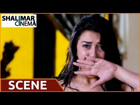 Denikaina Ready Movie || Vishnu & Hansika Comedy Scene || Vishnu, Hansika thumbnail