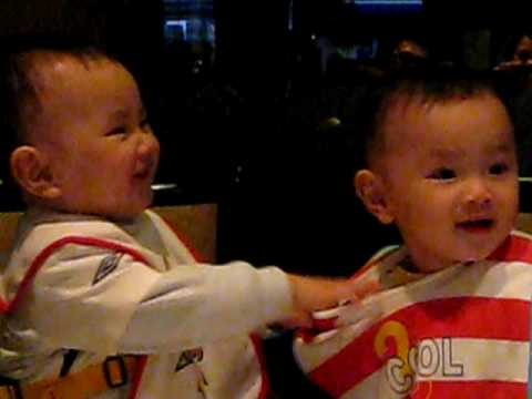 Twins babies kissing each other - funny & cute