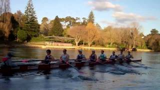 2011 MUBC Men's Eight in Hamilton training for Great Race