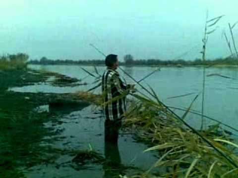 клипы про рыбалку полотно