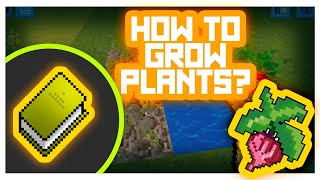 TUTORIAL #Howto Grow Plants!? @@ in REALMCRARFT Game with skin Export to Minecraft)