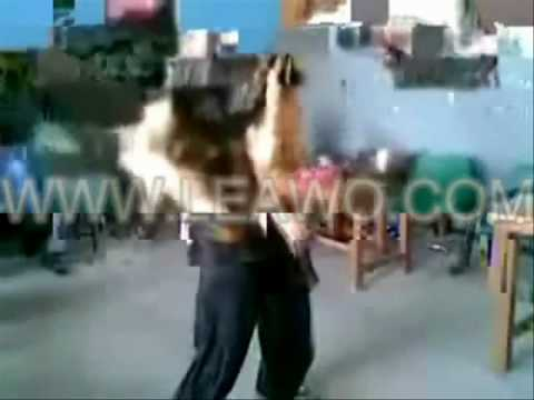 Karle Baby Dance Wance hello song.wmv...