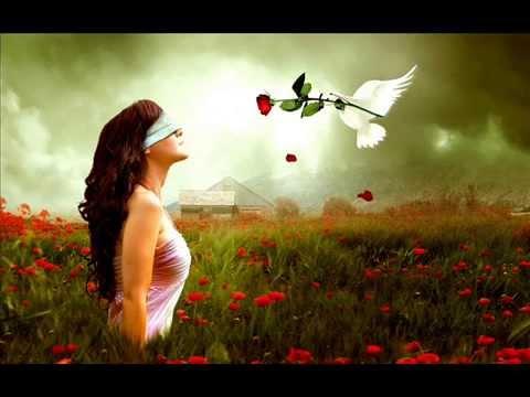 Best Love Shayari For Your Valentine In Hindi & Urdu | Valentine Day Message video