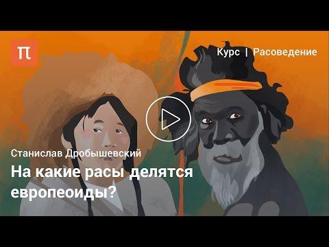 Европеоиды — Станислав Дробышевский