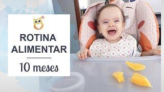 O que minha bebê come em 1 dia | Polly2 Start e Chicco Mode | Juliana Doerner