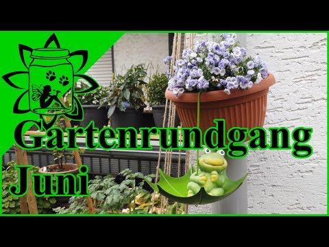 Gartenrundgang Juni 2019 | Garten Im Juni | Neues Vom Obst / Gemüse Anbau ? Deko Ideen Garten |