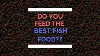 Feed the Best for your Pet Fish!! (Tamil)