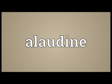 Header of alaudine