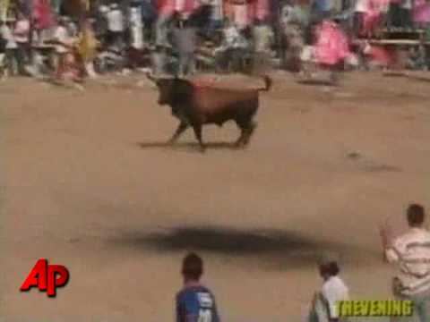 Man Gored To Death During Bull Fight Festival video