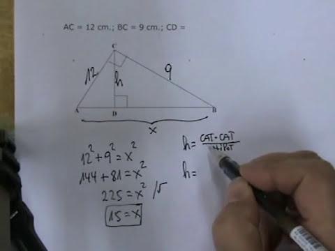 Teorema de Euclides 01