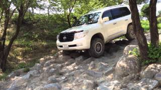 Land Cruiser 200 offroad in SAF ロック下り