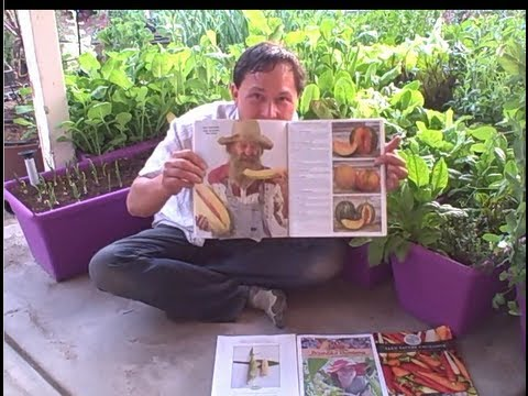 Best Seed Catalogs of 2013 for Home Gardeners