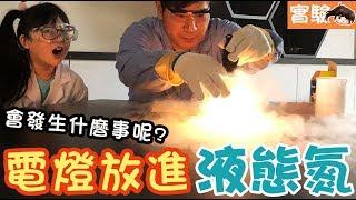 【實驗】燈泡在液態氮會發生什麼事?技術指導樂研科學[NyoNyoTV妞妞TV玩具]