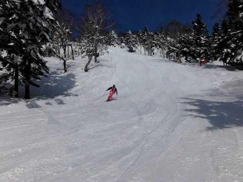 Gさんの鮮やかな滑走(高速撮影)@万座温泉スキー場