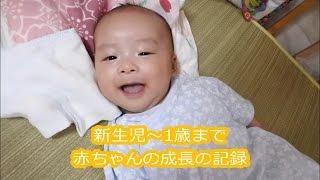 新生児から1歳まで 赤ちゃんの成長