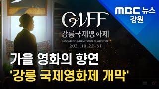 [LTE 현장] 강릉 국제영화제 개막.. 이 시각 현장
