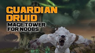Guardian Druid Mage Tower for Noobs