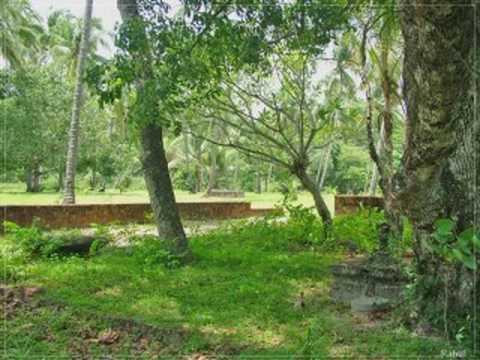 Dhanumasa Katte Vaayo Vayyo Vayyo video