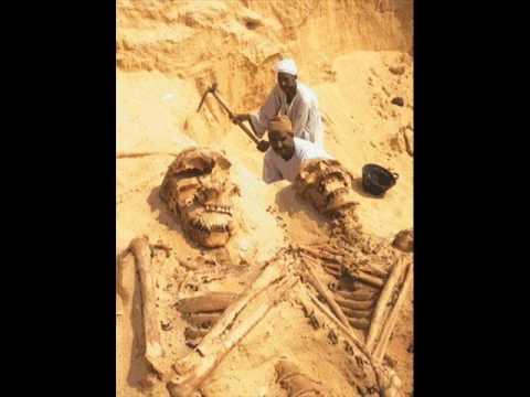 Gigantes que Viveram na Terra. wmv