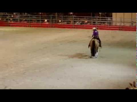 Salon du Paris 2013 Amateur ffe reining