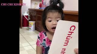 Trò chơi bé học bài bằng tranh ảnh 💖 Chi Chi Xinh 💖