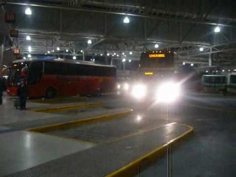 Busologia Chilena   presentacion de buses chilenos Especial Julio 2009