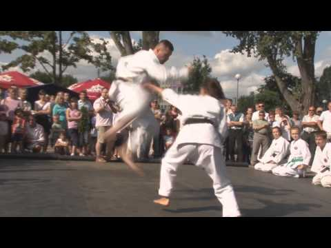 Pokaz shorin-ryu karate Image 1