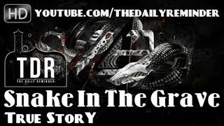 Snake In The Grave – True Story? Powerful Speech ? The Daily Reminder