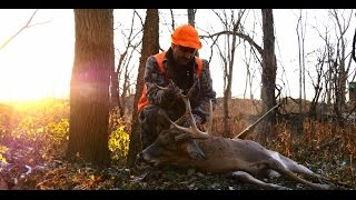 Deer Hunting ~ Illinois Firearm Season ~ A Legend Falls