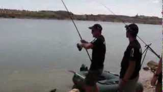 200lb Catfish Catfishing River Ebro Caspe Mequinenza  Hacienda angling Ebrocatquest part 1