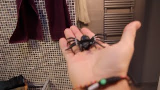 SPIDER IN THE SHOWER PRANK