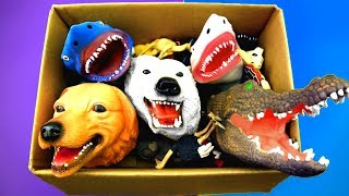 Learn Colors With Wild Zoo Animals and Shark Sea Animal Toys For Kids