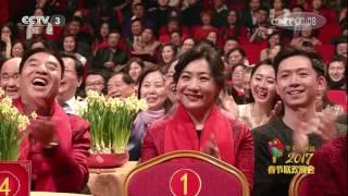 《2017春节联欢晚会语言节目集锦》 20170208 2/2