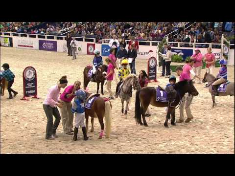 WIHS Shetland Pony Steeplechase, Race 2, Thursday, Oct. 23, 2014