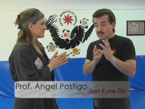 JEET KUNE DO Image 1