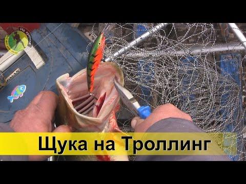 приманки для ловли троллингом щуки