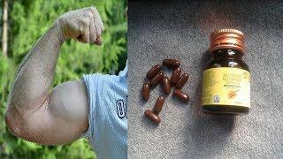 body building | बॉडी बनाने की सबसे सस्ती दवा | body banane ka tarika | vajan badhane ke tarike