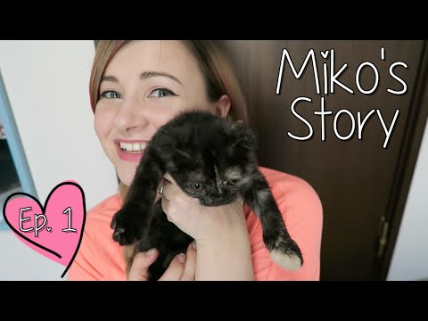 GUESS WHO HAS A HOME!? | Miko's Story Ep. 1
