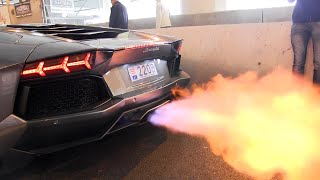 The BEST LAMBORGHINI AVENTADOR Engine SOUNDS Ever!!