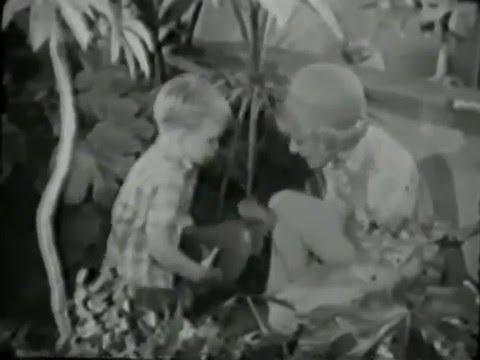 Jean Arthur Show--1966 sitcom, Ron Harper, Clint Howard