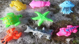 Sea Animals Names Learn Colors For Children Frozen and Unfrozen Ice Water Toy Videos For Kids Fun