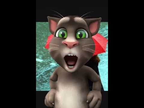 Il Gatto Tom Che Parla