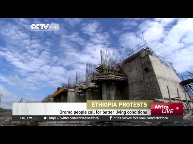 Egypt denies involvement in Ethiopia's conflict