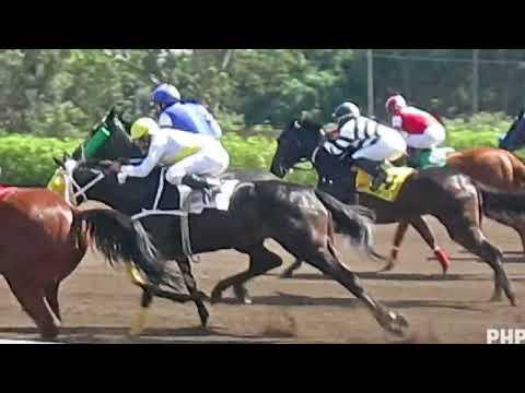 Impresionante partida de caballos en el Hipódromo de Monterrico